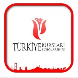 Yunus Emre Turkish Language Scholarship Program